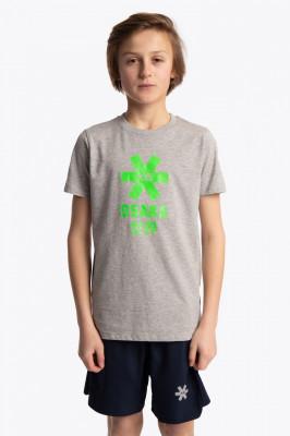 Tee OSAKA Deshi Gris/Vert